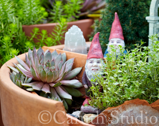 Cracked pot gnomes