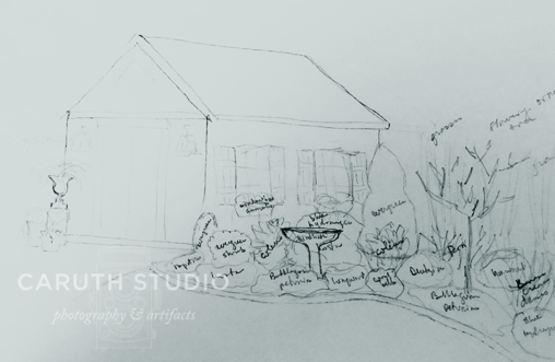 hand drawn sketch of the shed and flower bed
