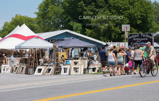 Madison_Bouckville_Antiques_Week-8